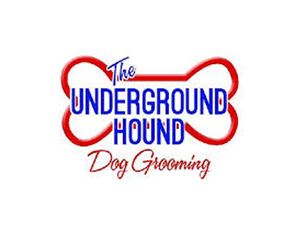 The underground hound dog grooming
